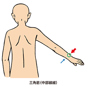 三角筋の筋力テスト